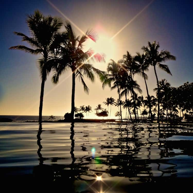 aulani sunset hawaii palm trees