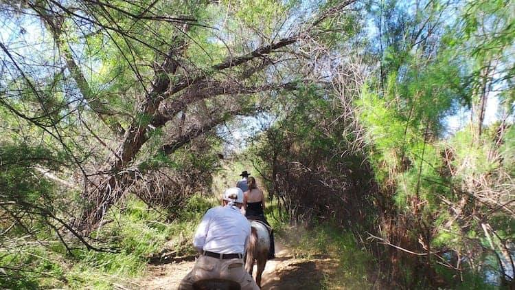 horseback riding in arizona 10