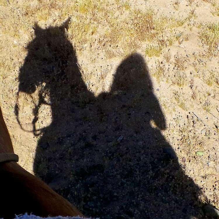 horseback riding in arizona 9