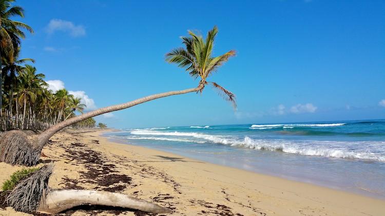 macau beach punta cana