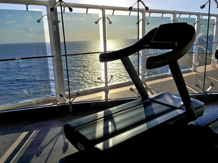 msc divina treadmill