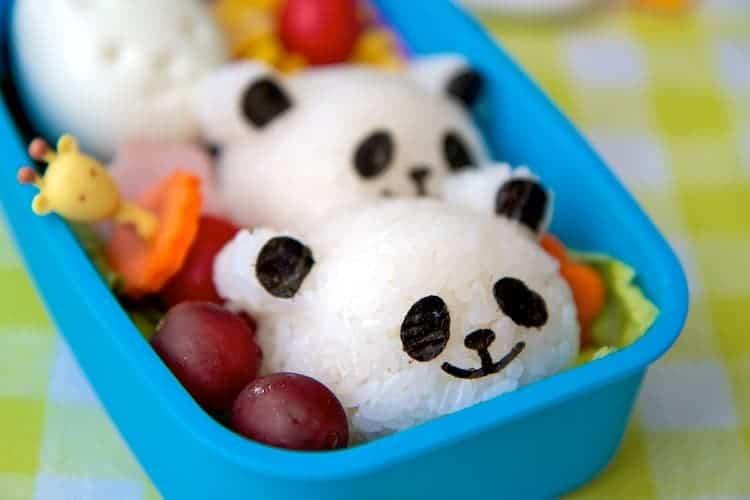 panda rice balls bento box lunch 8