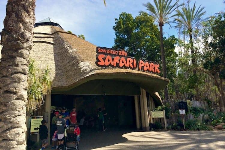san diego zoo safari park 2