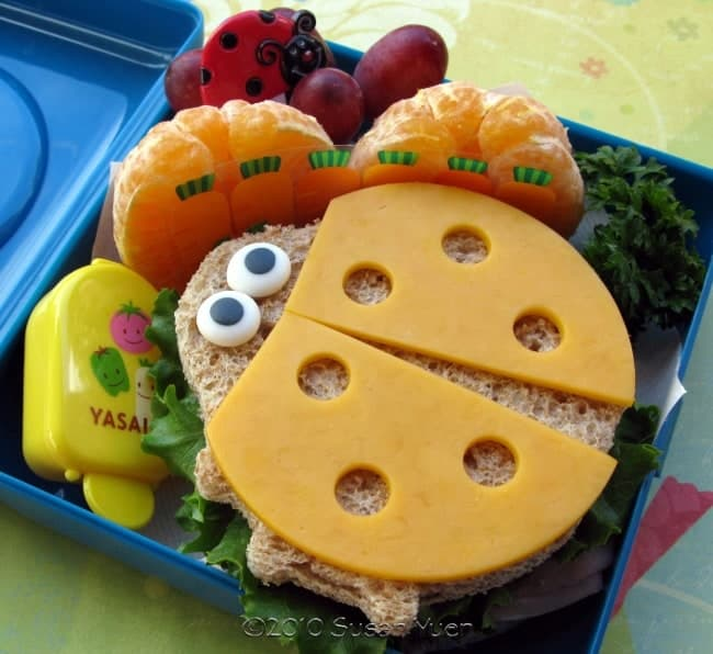 Kid Friendly Bento Box Ideas with Cuties