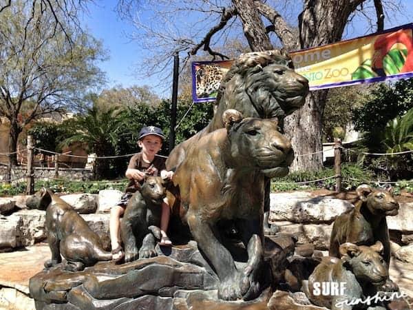 San Antonio Zoo 2