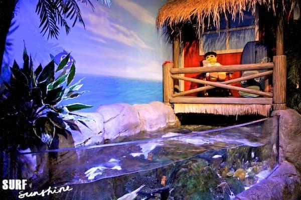 Sea Life Aquarium 11