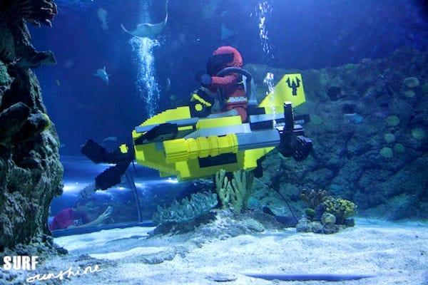 Sea Life Aquarium 7
