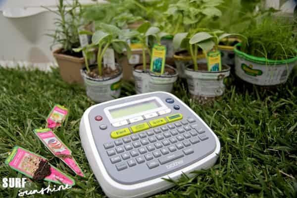 container gardening 2