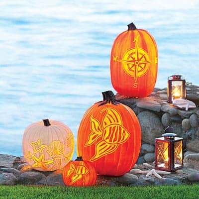 seashell fish and compass pumpkin template