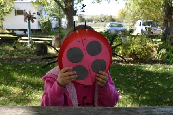 DIY Ladybug Craft Project for Toddlers