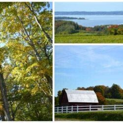 Family Friendly Things to Do in the Fall in Traverse City