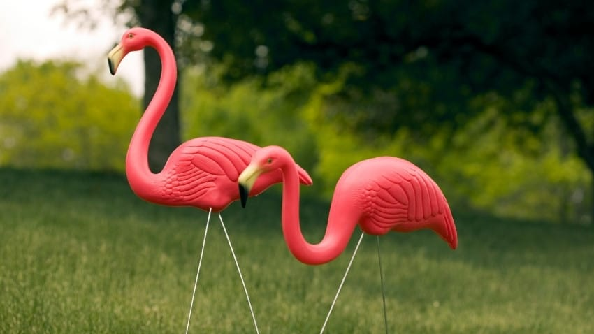 halloween pranks lawn flamingo