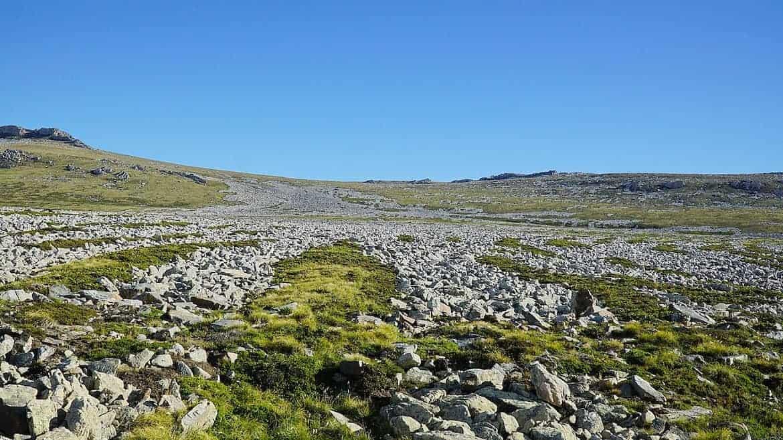 stone runs falklands