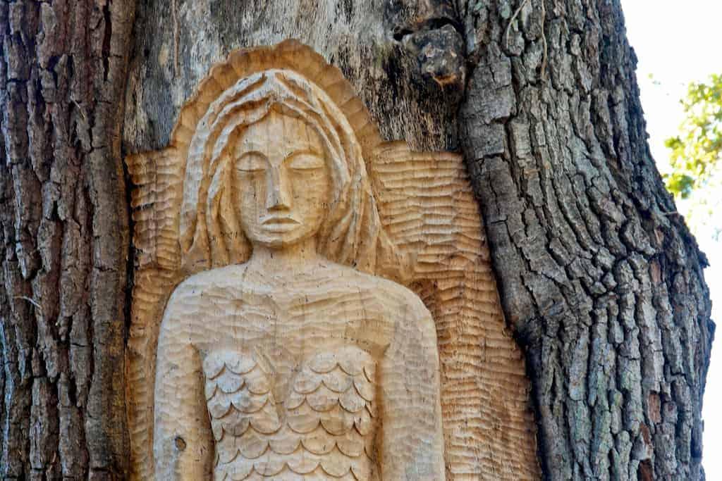2017 hgtv dream home tree spirits
