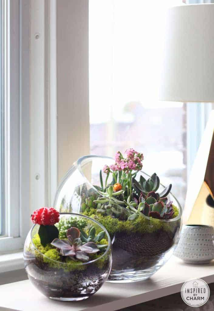 13 Gorgeous Succulent Projects You Can Do This Weekend