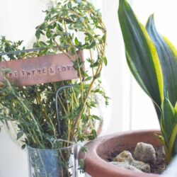 DIY Your Own Beautifully Rustic Hand Stamped Metal Plant Markers