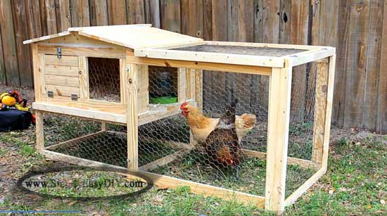 Small easy to build chicken coop for 1 to 2 chickens. Free DIY Chicken Coop Plans.