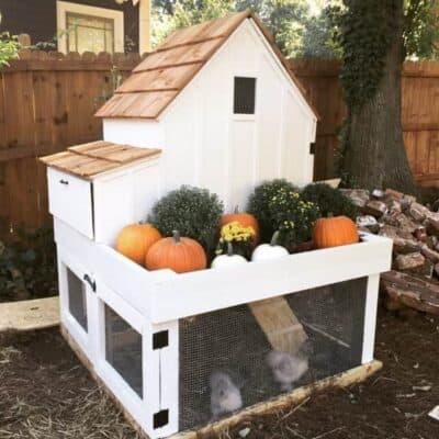 Free Chicken Coop Plans 12