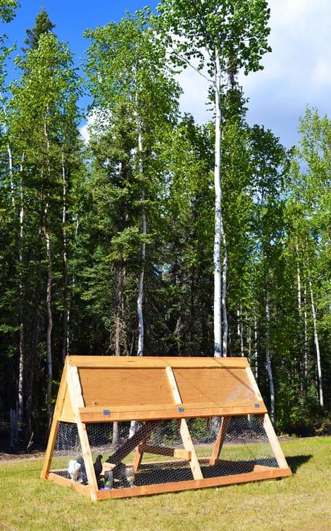 A frame chicken coop plans. Free DIY Chicken Coop Plans.