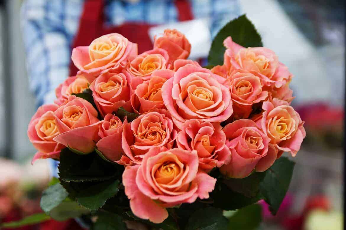 rose 3090840 1280 - The Best and Worst Valentine's Day Gift Ideas For Women
