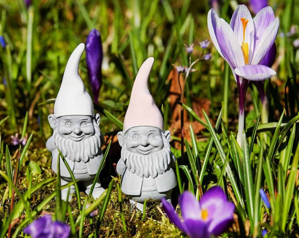 how to create the perfect gnome garden