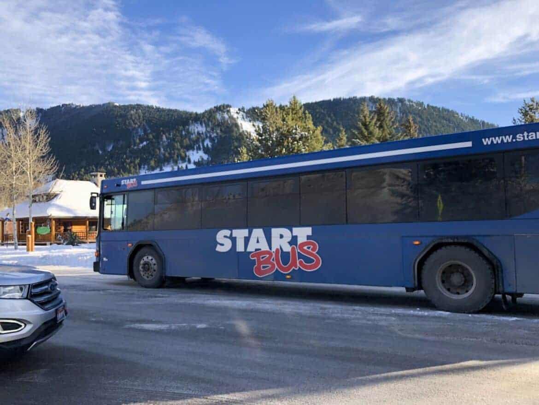 jackson start bus