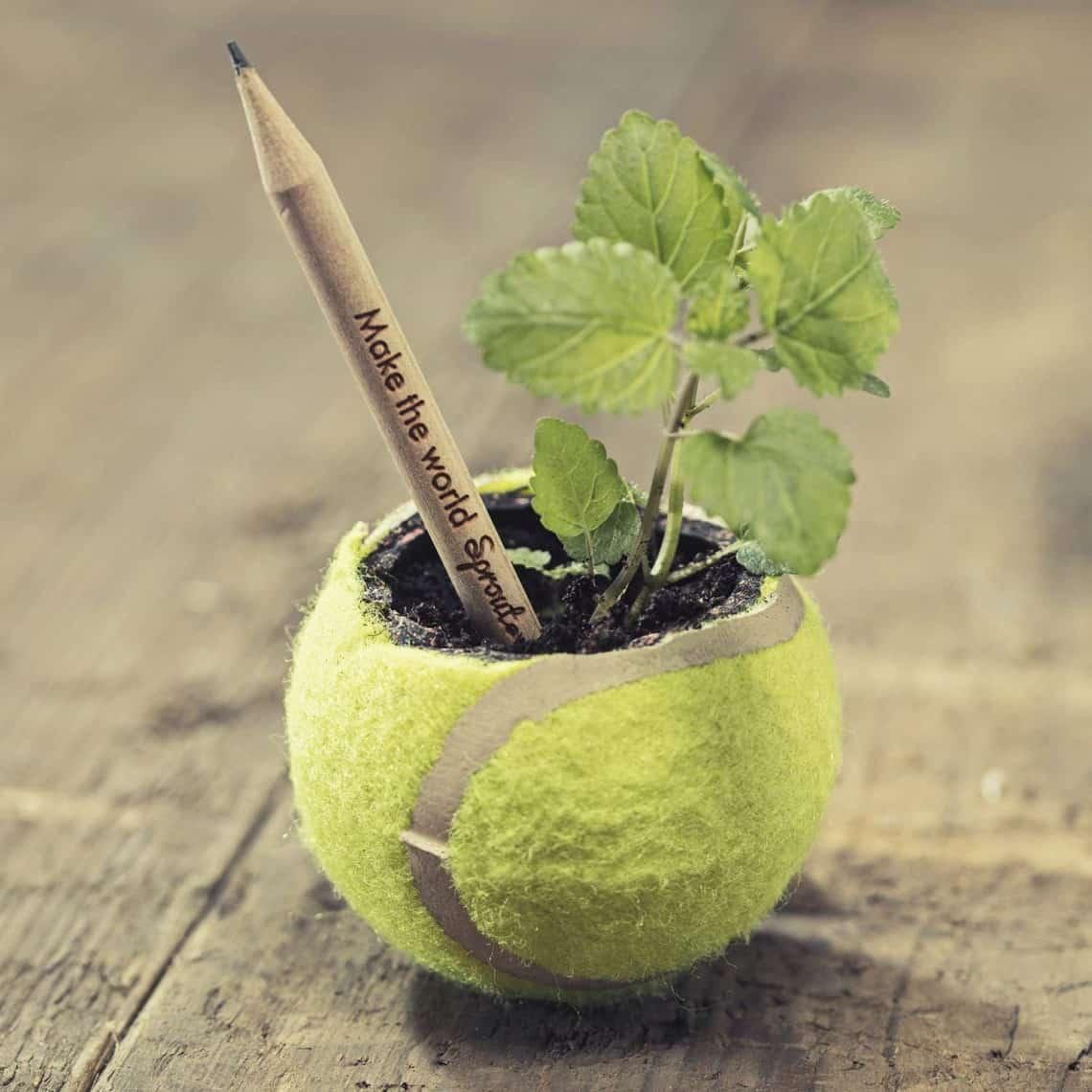 Eco-Friendly Gift Ideas