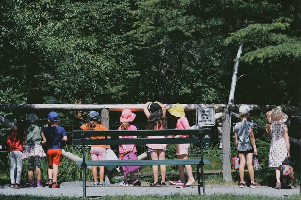 children standing beside fence during daytime kids school field trip