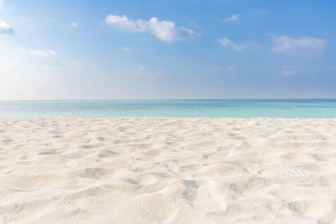 siesta beach tampa