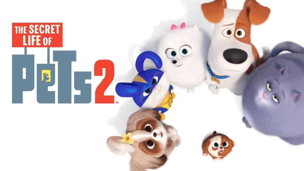 Halloween Costume Ideas For Secret Life Of Pets 2 Surf And Sunshine
