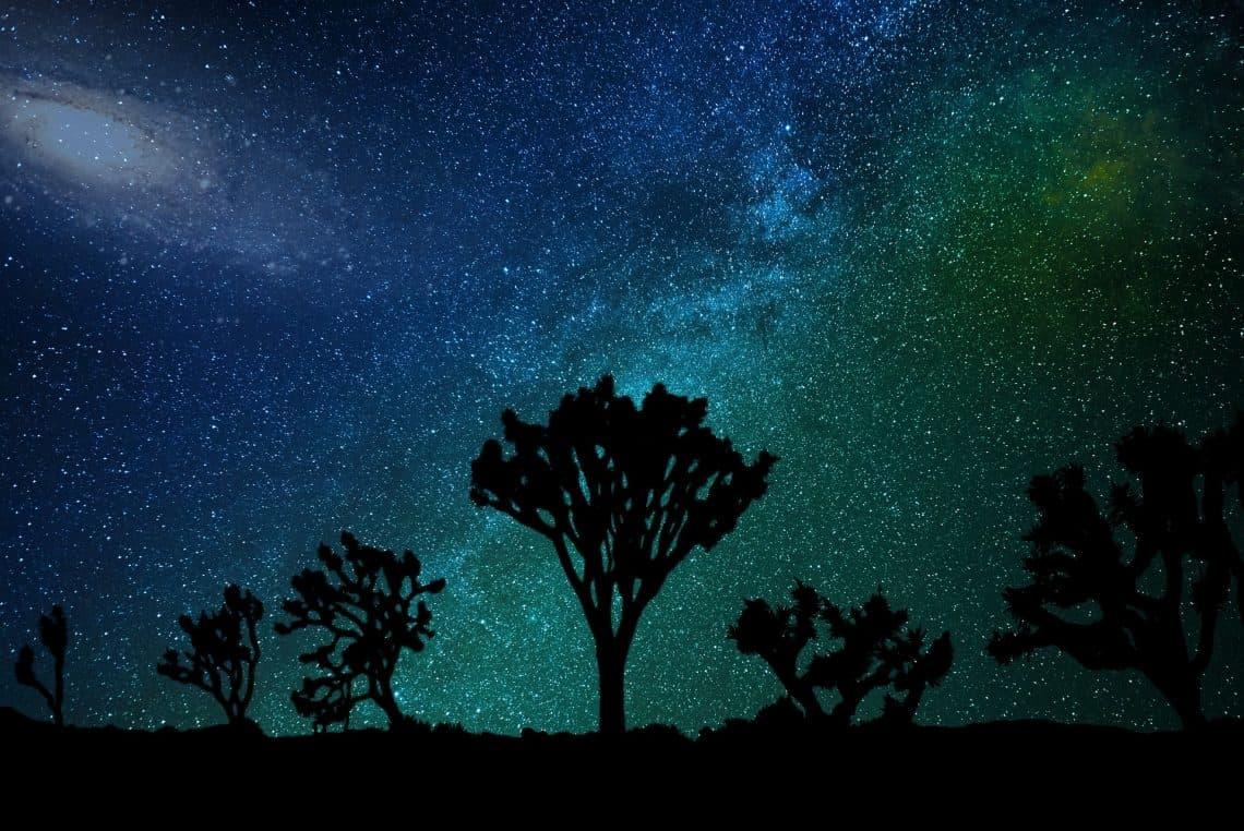 milky way night stargazing joshua tree