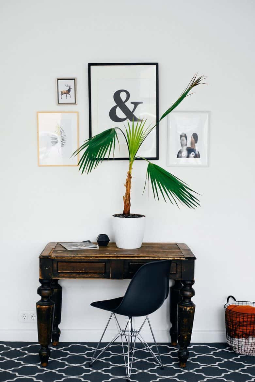 art wall desk plant