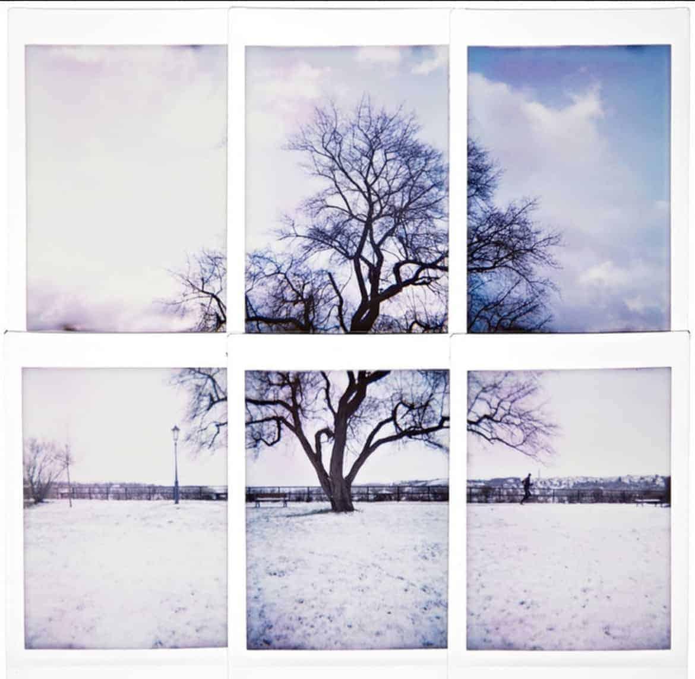 cute polaroid picture idea  scene composition