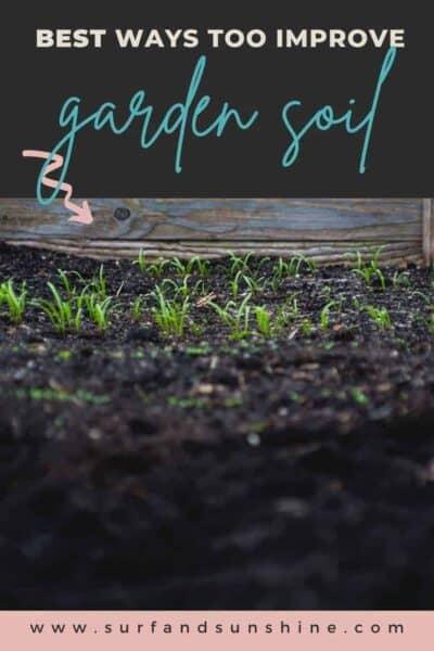 best ways to improve garden soil 1