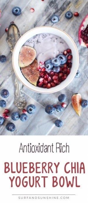 blueberry chia bowl recipe