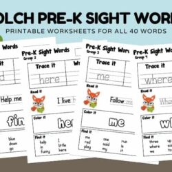 Teaching Your Child to Read with Dolch Sight Words