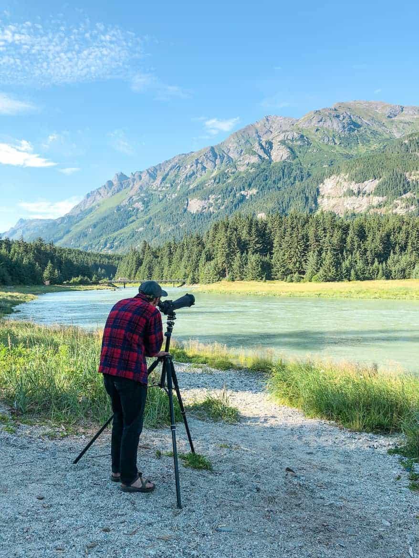 Chilkoot Wildlife Viewing