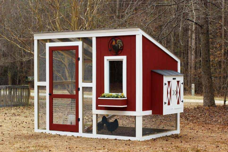 free chicken coop plans for 6 chickens with enclosed run
