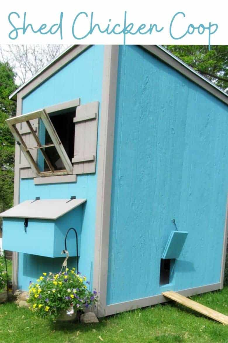 shed chicken coop plans