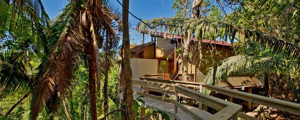 Belize Tree House