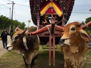 Bullock Cart Village