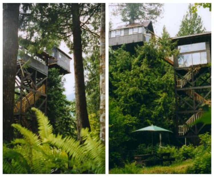 Cedar Creek Tree House Mount Rainier