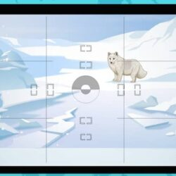 For Kids: 15 Facts About The Arctic Biome & Its Inhabitants