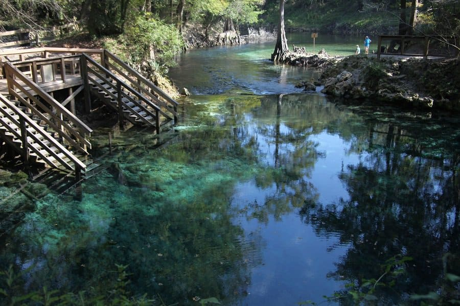 Madison - Natural Pools in usa
