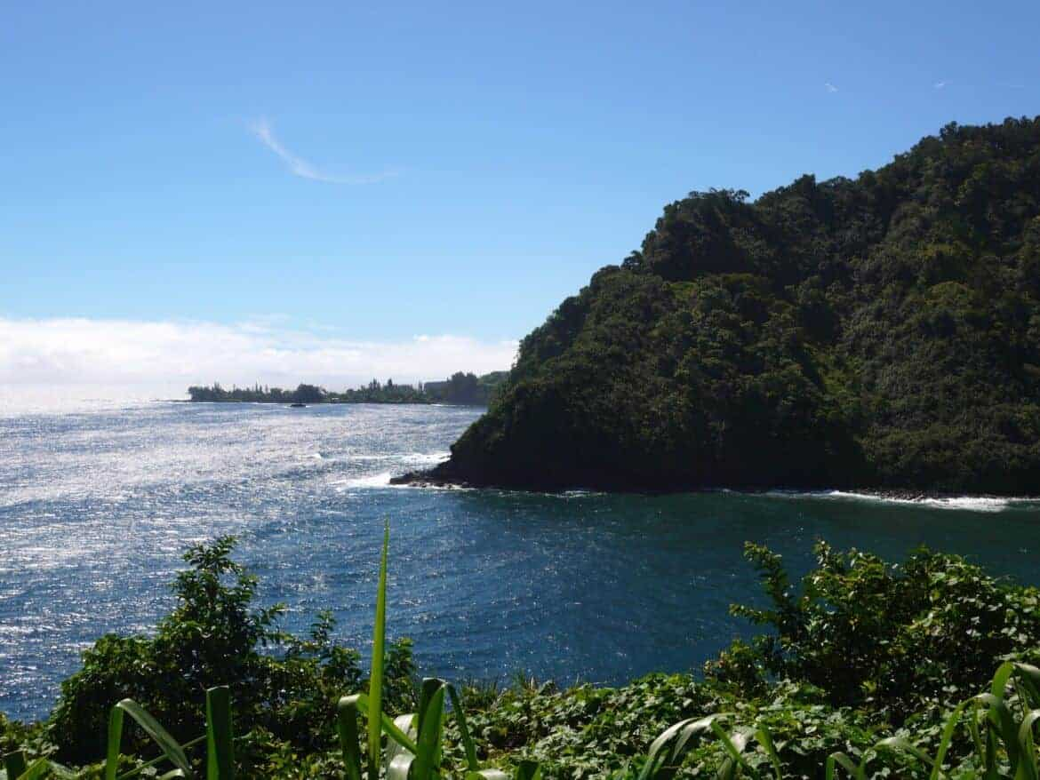 Spectacular views on our day trip along the road to Hana.