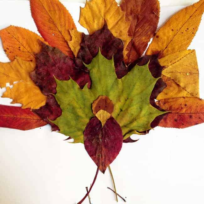 turkey craft from leaves and sticks