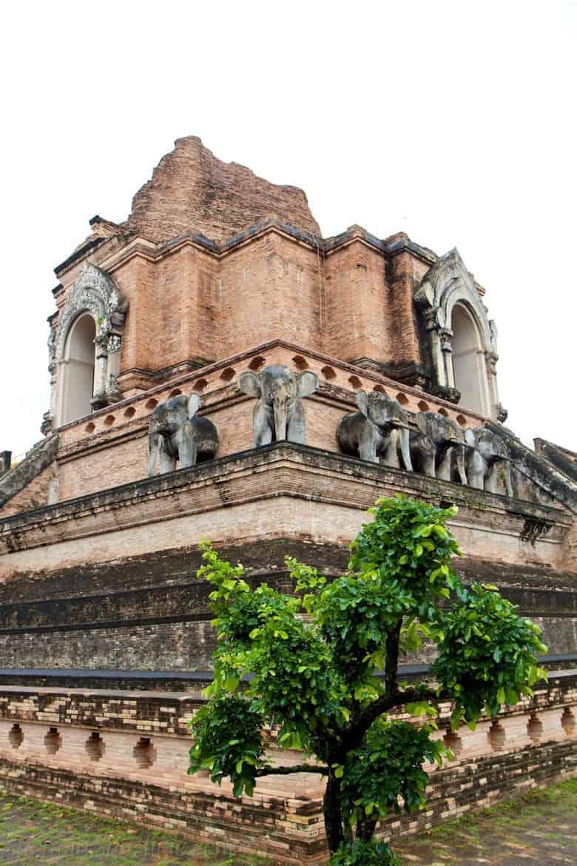 Wat Chedi Luang Elephants