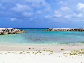 de palm island aruba 9