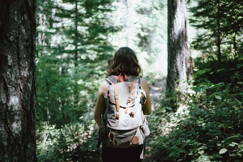 hiker-918704_1280