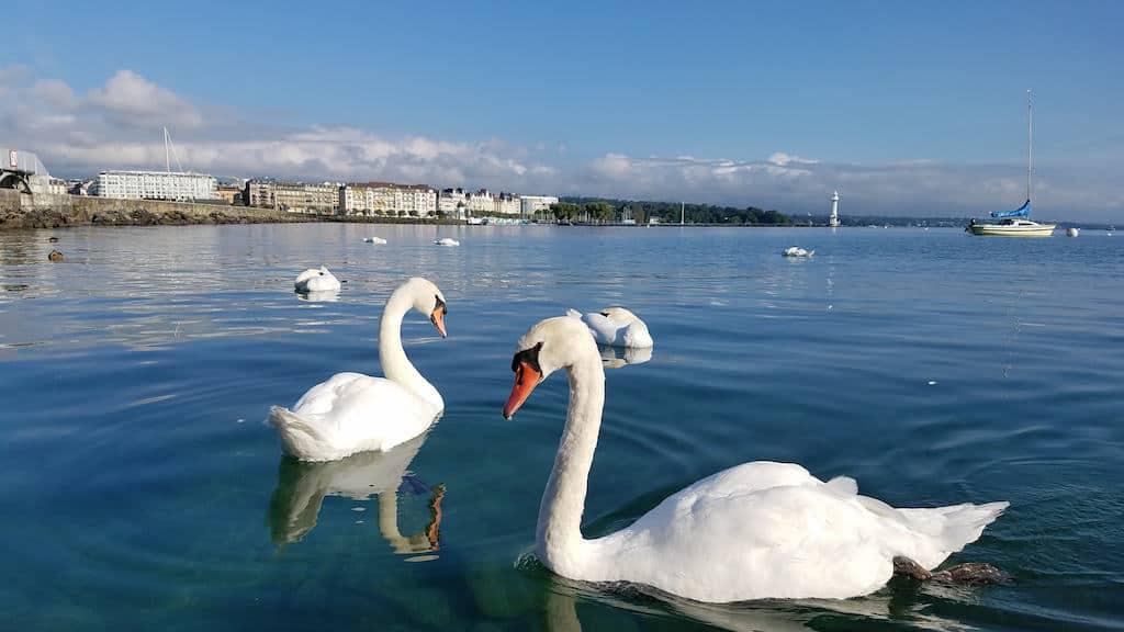 Le Richemond, Geneva Switzerland